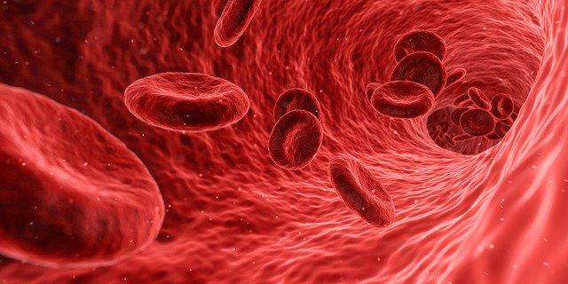 Impacte des progrès scientifiques sur les recherches en biologie
